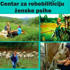 """Analiza ciljne grupe i promocije Etno Sela – Centar za """"rehebiliticiju"""" ženske psihe"""